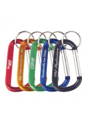 Bright Colorful Carabiner with Keyring Key Chain