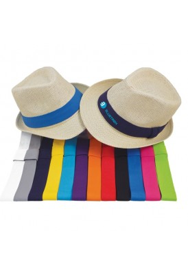 Fedora Hat with Stylish Accent Color Band