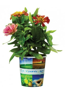 Grow Cup Eco Messages