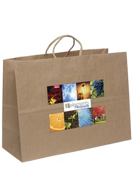 Full Color Printed Paper Bag Twist Handles Horizontal 16 Wide